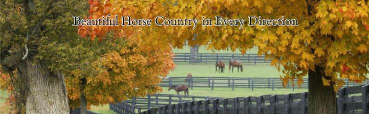 Beautiful Horse Country in Every Direction